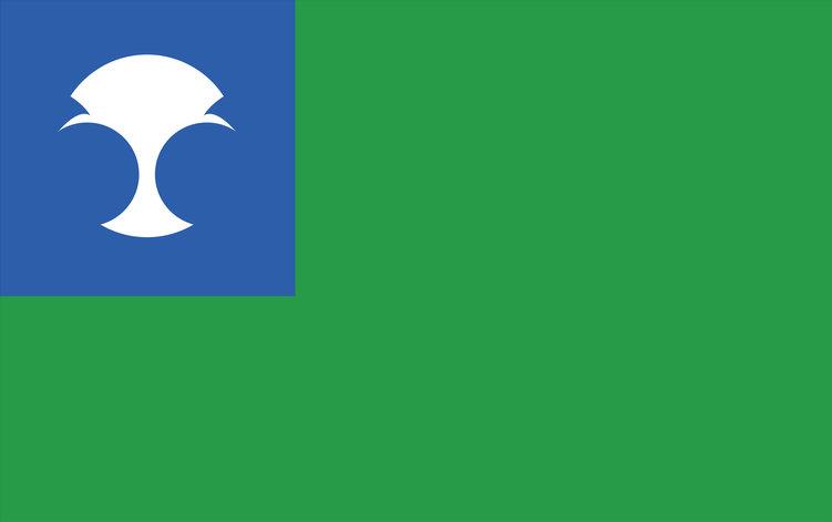 Alderaan flag