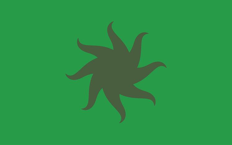 Kashyyyk flag