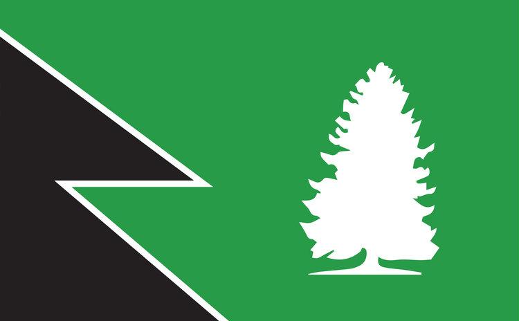 Endor flag